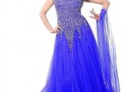 Arya Dress Maker Net Gown  (Blue)