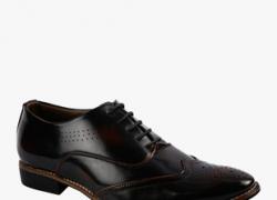 Bacca Bucc Trending Brown Formal Shoes
