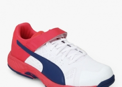 Puma Evospeed Cricket B White Cricket Shoes