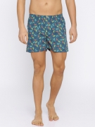Flying Machine Blue Printed Boxers FMAM8067