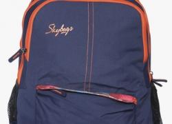 Skybags Footloose Colt 03 29 L Backpack  (Blue)
