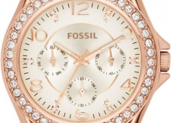 Fossil ES3466 Watch – For Women
