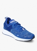 Puma Ignite Evoknit Lo Blue Running Shoes