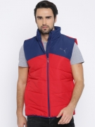 Puma Men Red & Blue Colourblocked ESS Padded Vest Jacket