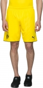 Puma Short For Boys Sports Solid Polyester  (Yellow, Pack of 1)